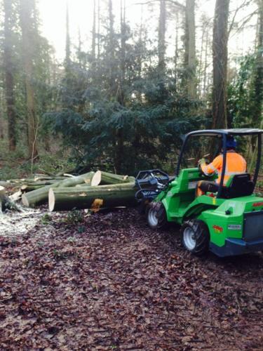 Low impact timber handling